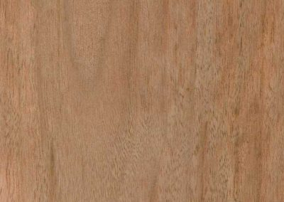Blue Gum timber swatch from Five Star Finishers Gold Coast