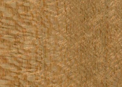 Silky Oak timber swatch from Five Star Finishers Gold Coast